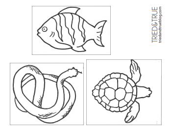 """Рисунки """"Рыба, черепаха, змея"""""""