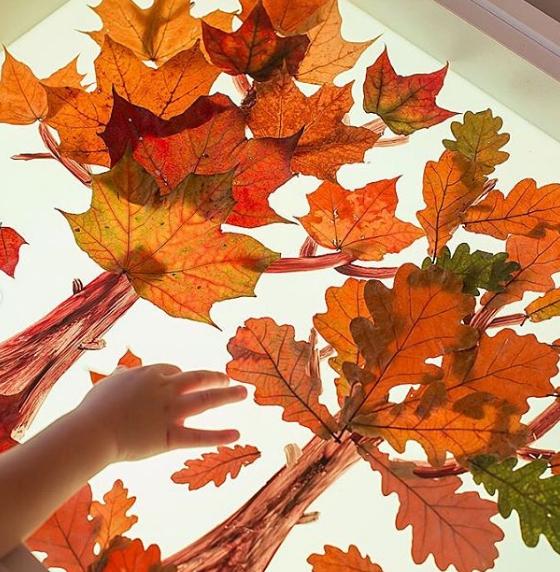 Осенние пожелтевшие листья.