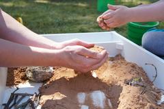 Психотерапия на песке