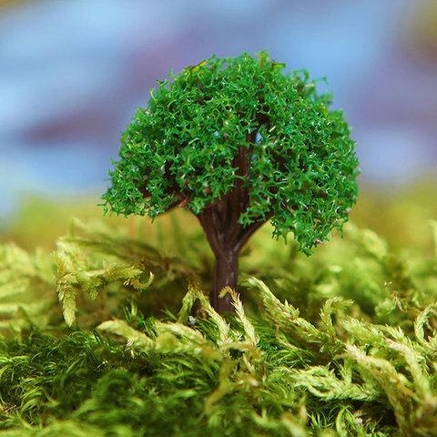 """Дерево для сенсорных коробочек """"Ива ломкая"""", набор 4 шт"""