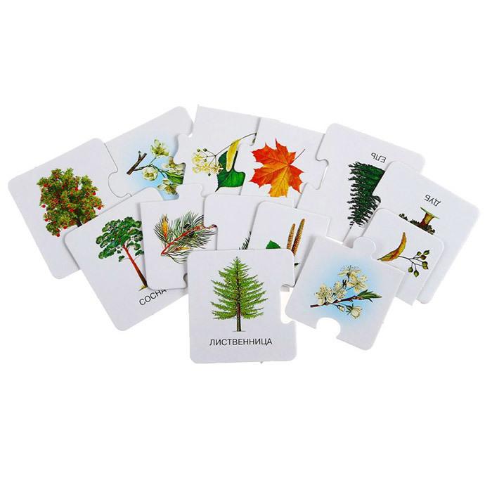 дидактические карточки для детского сада и дома