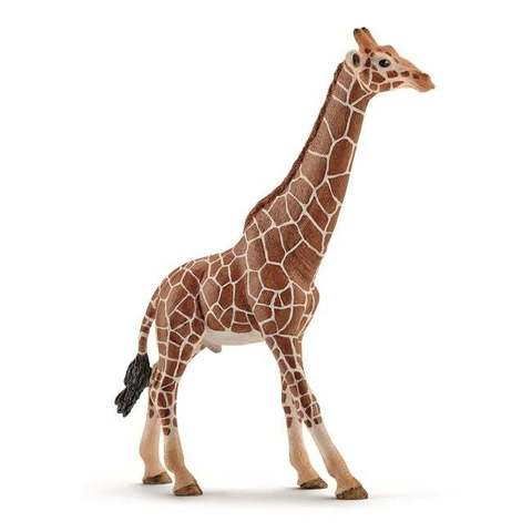 "Фигурка ""Жираф, самец"", Schleich"